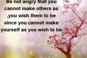 Best Quotes on Anger