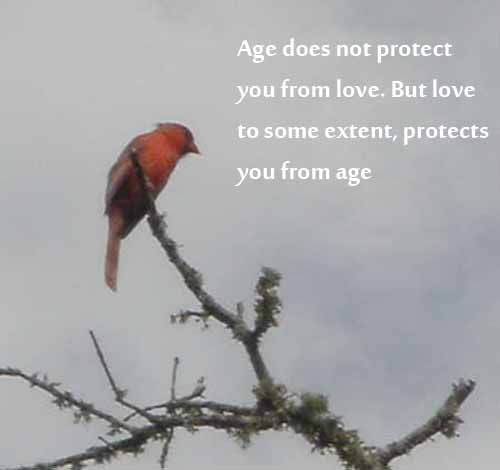 Inspirational Age Quotes