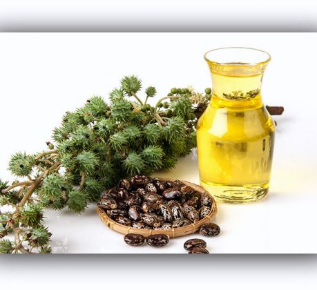 How To Use Castor Oil। Castor Oil For Hair Growth